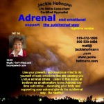 Adrenal and Emotional support nighttime version